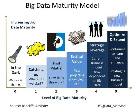 Big Data Maturity
